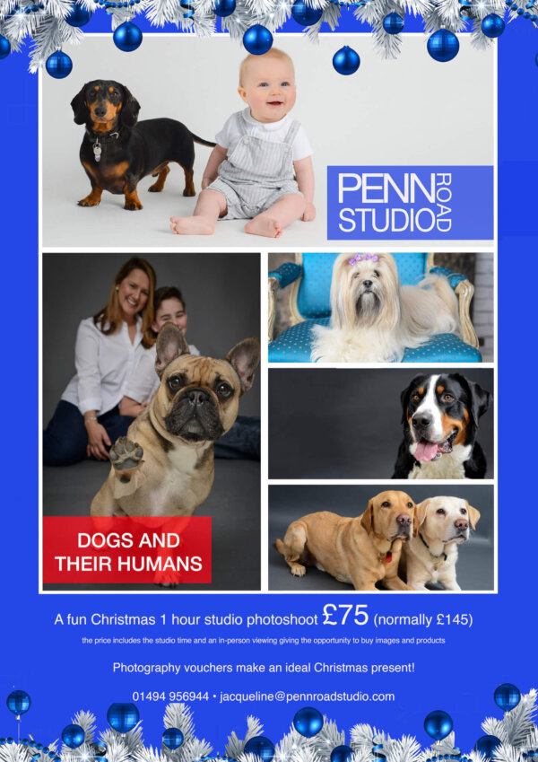Dogs and Their Humans Photography <br>Seasonal Promotional Offer